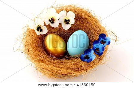 Gold And Blue Eggs In The Nest