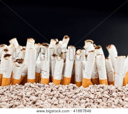 Wall Of Cigarettes