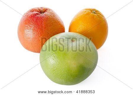 Grapefruit, Orange, And Sweetie