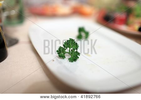 Piece Of Parsley