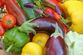 picture of aubergines  - Freshly harvested Mediterranean vegetables - JPG