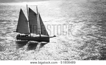 Black and white of sailboat sailing through suns reflection.