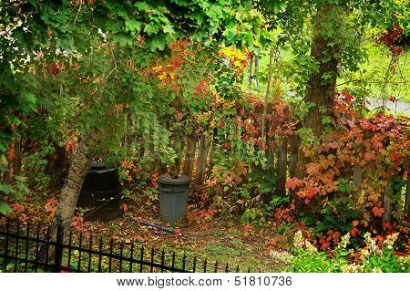 autumn falling leaves garden scenic