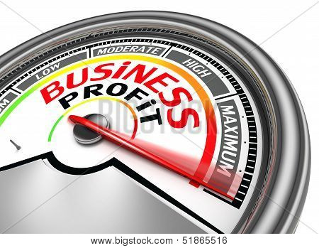 Business Profit Conceptual Meter