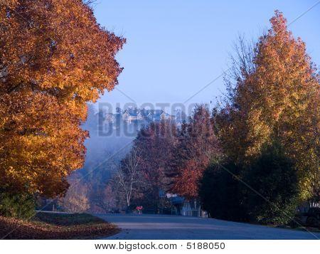 Early Morning Fall