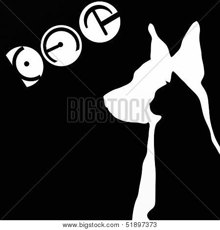 Silhouettes Of Dog And Cat