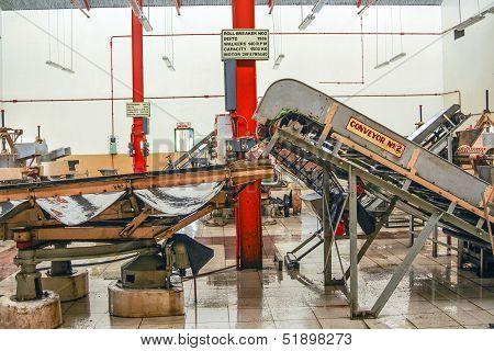 Inside A Tea Factory