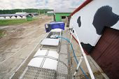 image of dairy barn  - Loading of milk in truck stands near a production barn  - JPG