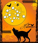 stock photo of wolf moon  - Wolf howling at the moon  Halloween  - JPG