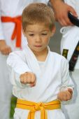 picture of karate kid  - boy in karate suit with yellow belt training - JPG