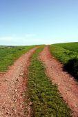 foto of devonshire  - Eyeleading farm track moving towards the horizon in Devon England - JPG