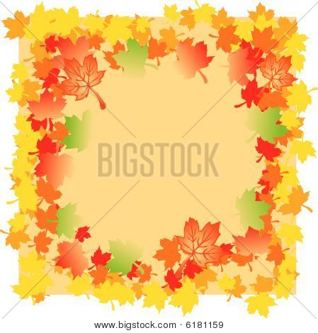 Mapple Autumn Leaves
