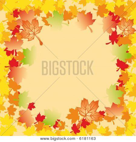 Mapple Autumn Leaves