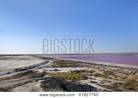 Salt Extraction Camargue