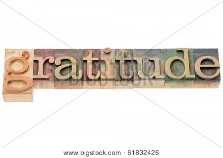 gratitude word - isolated word in letterpress wood type