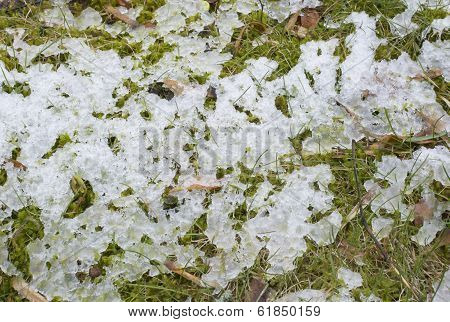 Ice Slush And Grass