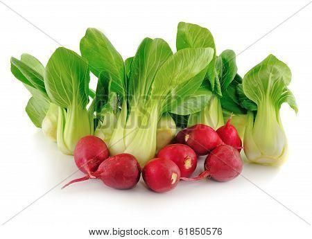 Bok Choy (chinese Cabbage) And Radishes On White Background