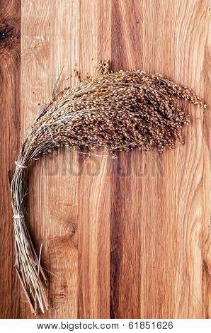 Bundle of millet on wooden background.
