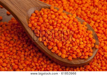 Red Lentils On Spoon