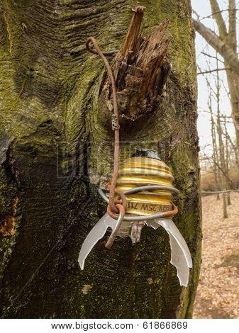 Broken Bulb On Tree