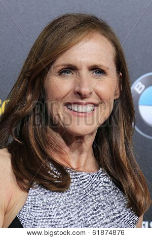 LOS ANGELES - MAR 20: Molly Shannon at the 2nd Annual Rebels With A Cause Gala at Paramount Studios on  March 20, 2014 in Los Angeles, California