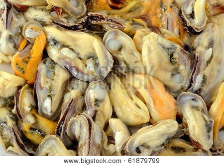 Fresh Mussels At The Market