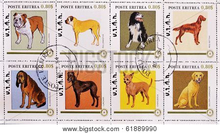 ERITREA - CIRCA 1984: A stamp printed in Eritrea showing different breeds of dogs serie circa 1984