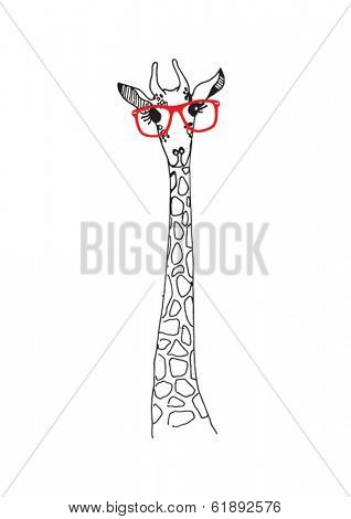 Vector sketch giraffe illustration