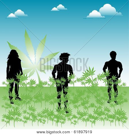 People in a field of weed