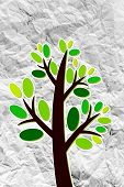 image of eucalyptus leaves  - Set of trees with leaves on crumpled paper - JPG