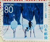 JAPAN - CIRCA 1990: A stamp printed in Japan depicted Oriental Stork (Ciconia boyciana), circa 1990