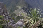 View From The Top Of Wine Picchu