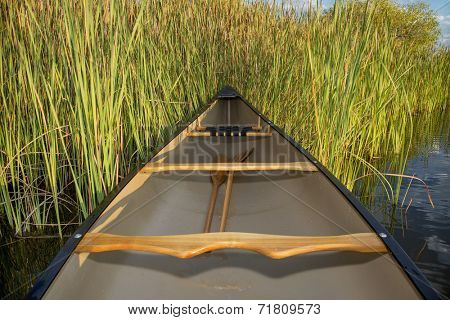 canoe on a lake shore with cattails, late summer in Fort Collins, Colorado