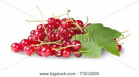 Bunch Of Red Currants With Currant Leaves Rotated