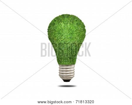 ecology light bulb energy concept
