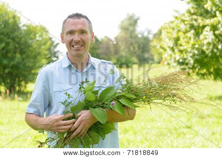 Man homeopath herbalist picking up wild herbs with a
