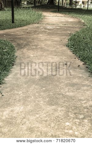 Concrete Walk Way Surrounded By Green Grasses