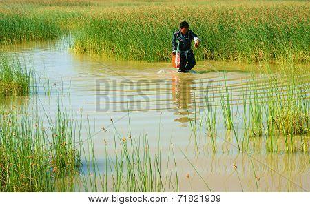 Beautiful Landscape, Vietnam Countryside