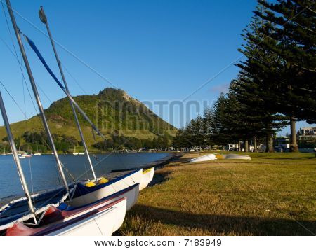 Mount Maunganui through yacht masts.