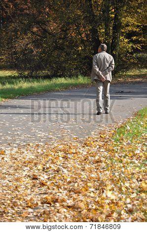 Senior Walking In Autumn Park