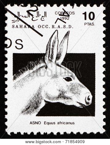 Postage Stamp Sahara 1992 African Wild Donkey