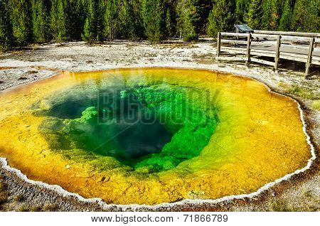 Detail View Of Geothermal Pool Morning Glory In Yellowstone Np