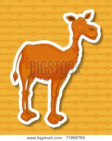 Illustration of a closeup camel with background