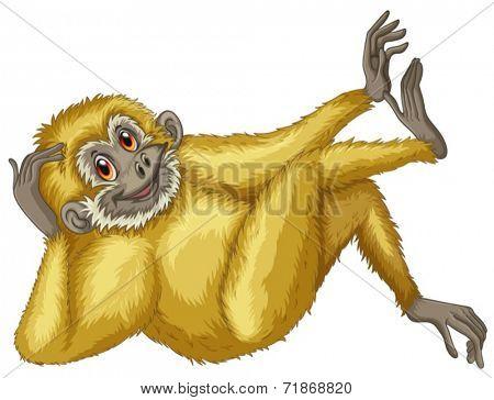 Illustration of a closeup gibbon