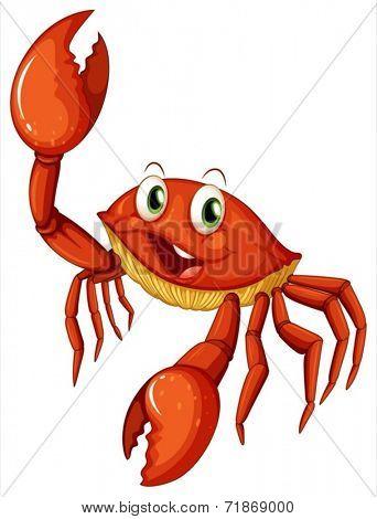 Illustraion of a single crab