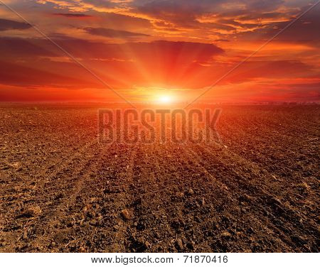 sunset over plugged field