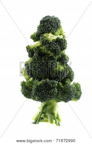Christmas Tree From Broccoli