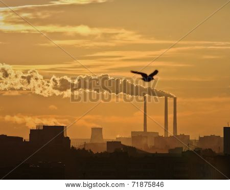 Black Toxic Smoke From Chemical Plants