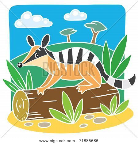 Children vector illustration of little numbat.