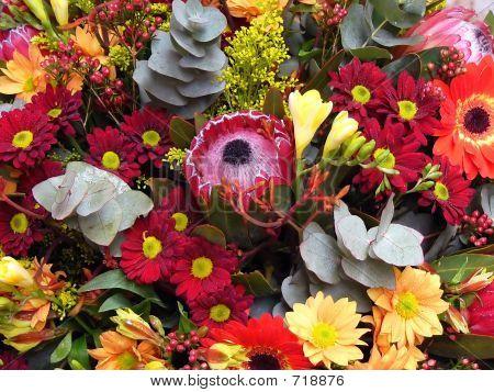 Flower Arangement/Bouquet 3